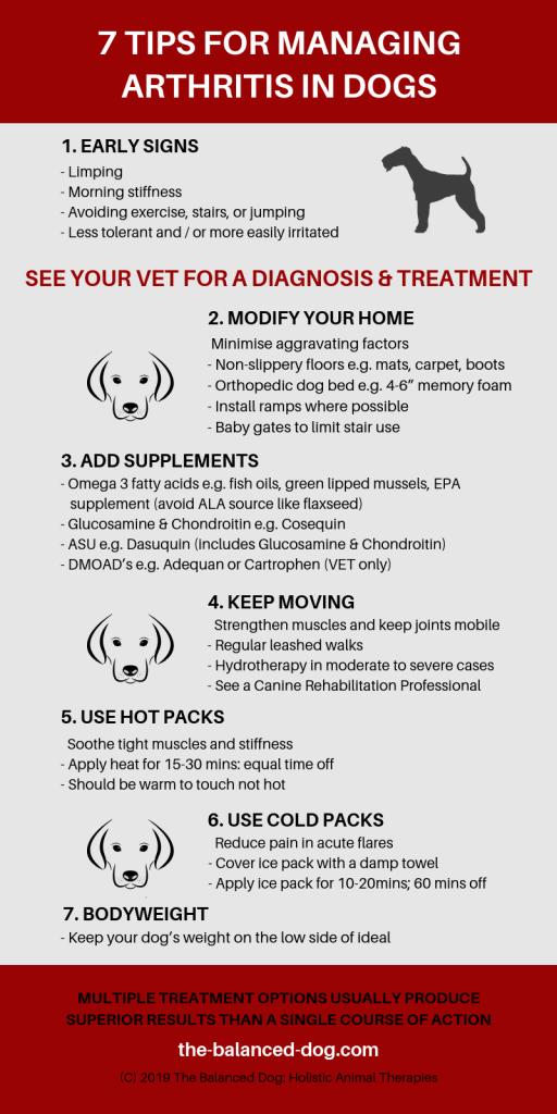 Managing Arthritis in Dogs, arthritis in dogs, dog arthritis, dog arthritis treatment